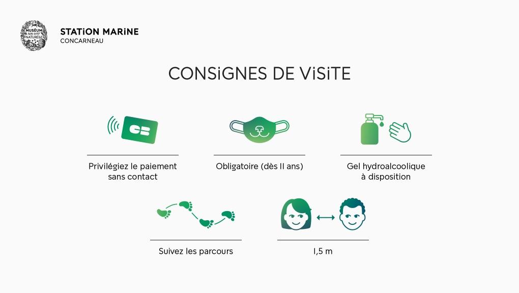 Déconfinement : consignes de visite - Station Marine de Concarneau