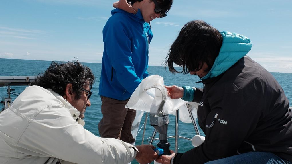 Conditionnement de la récolte de plancton pour la rapporter au laboratoire © Marie-Noëlle Le Noac'h