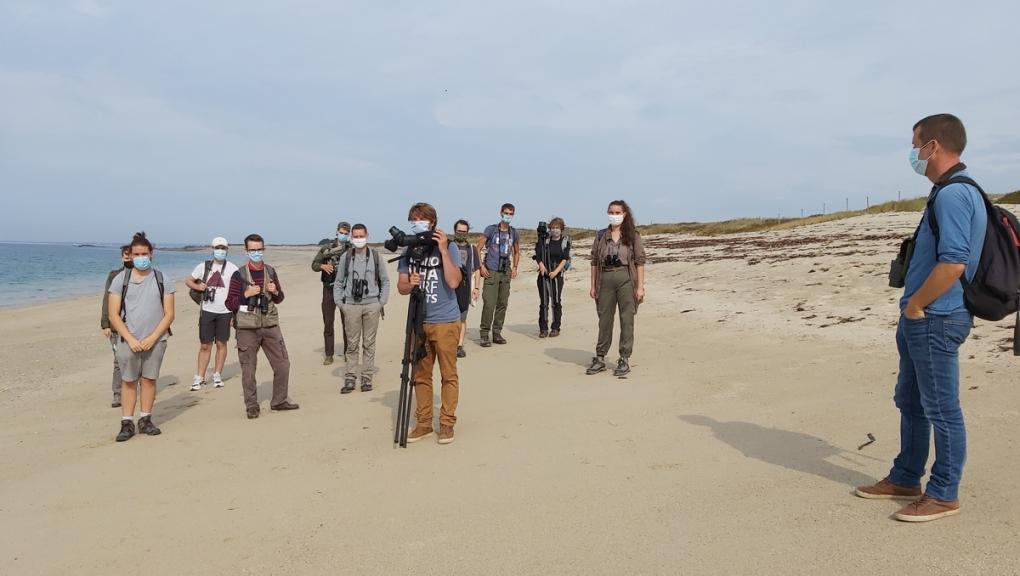 Observation d'oiseaux à la plage