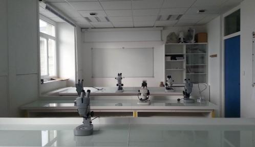 Salle de travaux pratiques © MNHN - Station marine de Concarneau