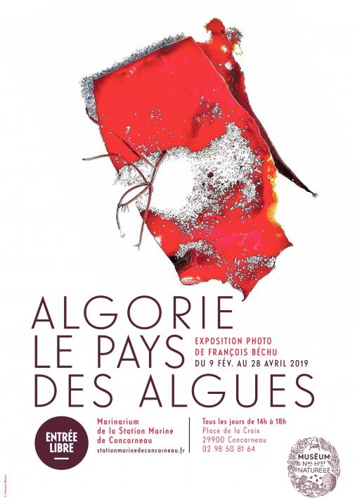 Affiche expo Algorie