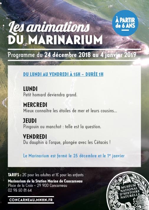 programme des animations de noel au Marinarium