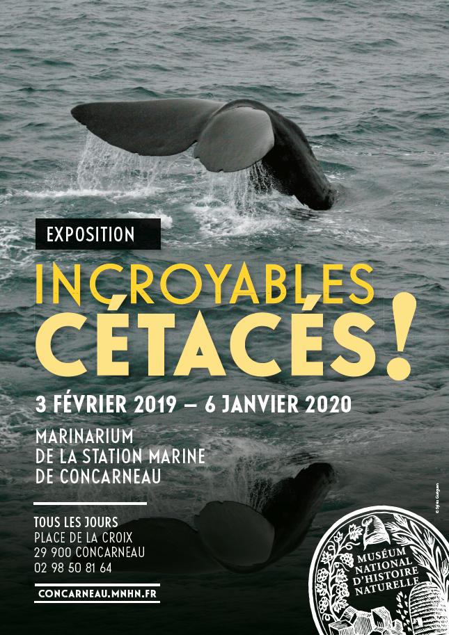 affiche expo incroyables cétacés