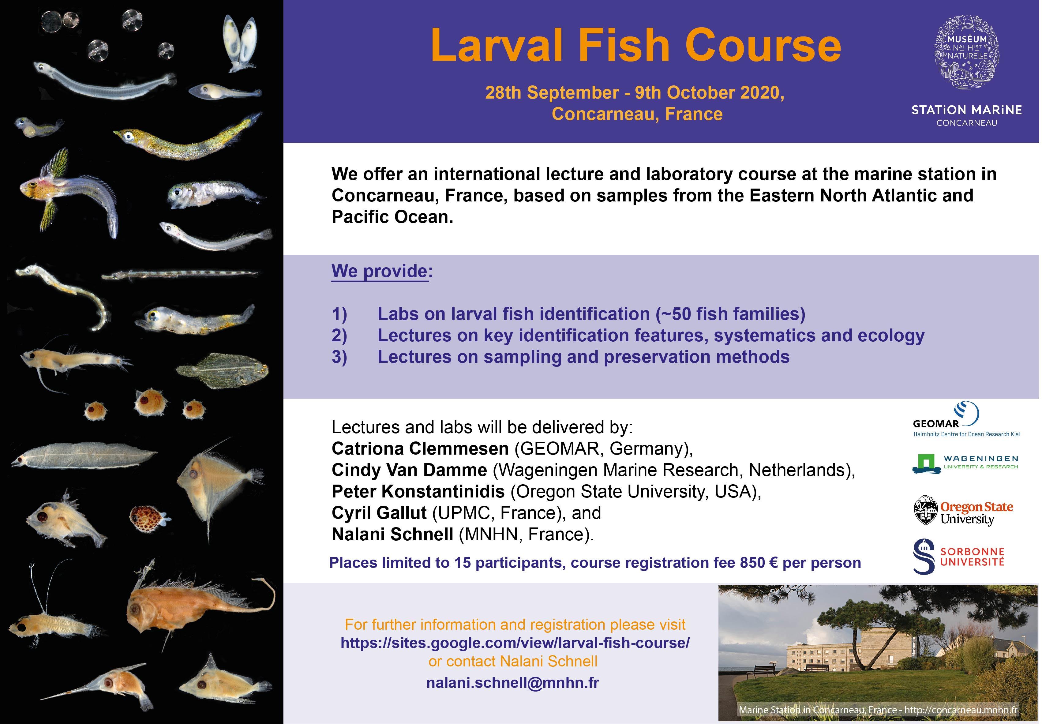 formation sur les larves de poisson