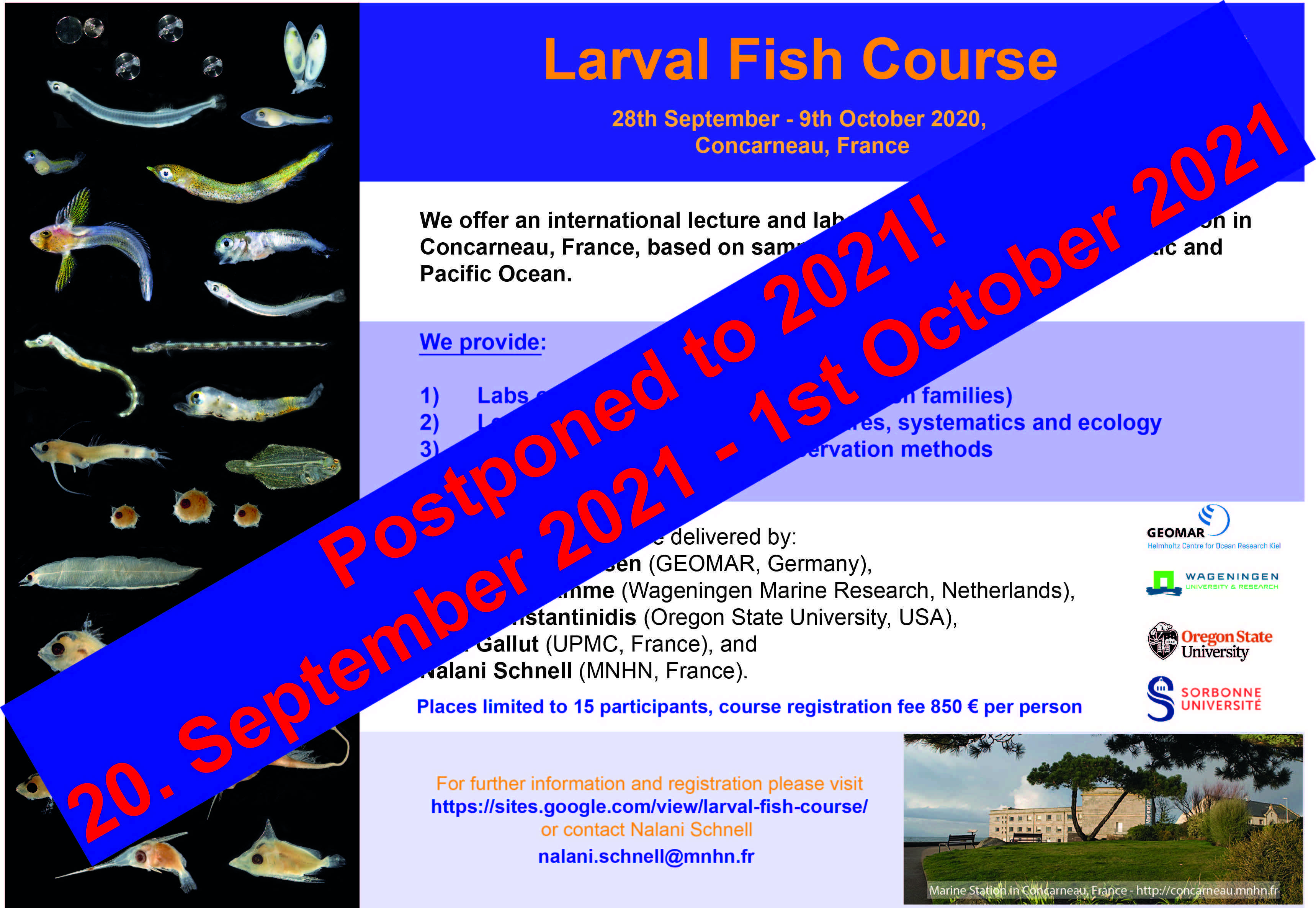 larval fish course concarneau postponed to 2021
