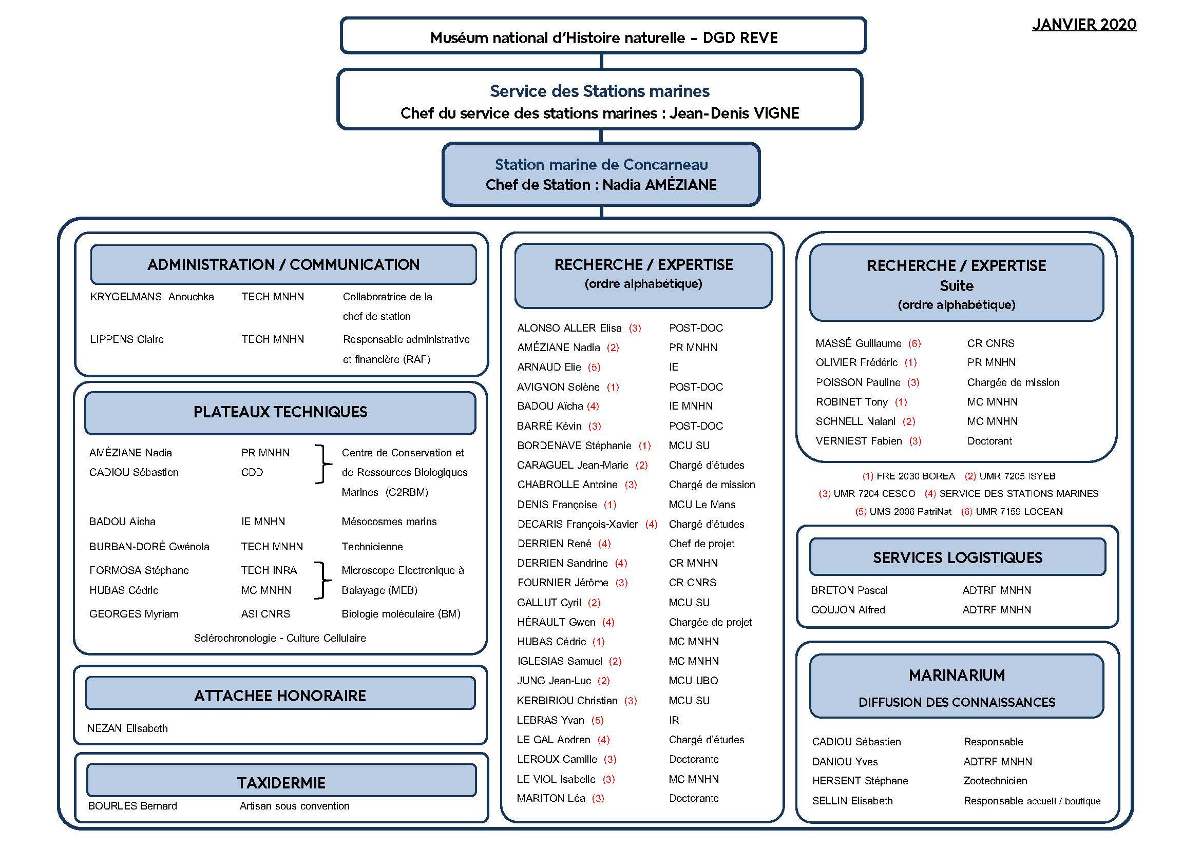 Organigramme de la Station marine de Concarneau 2020